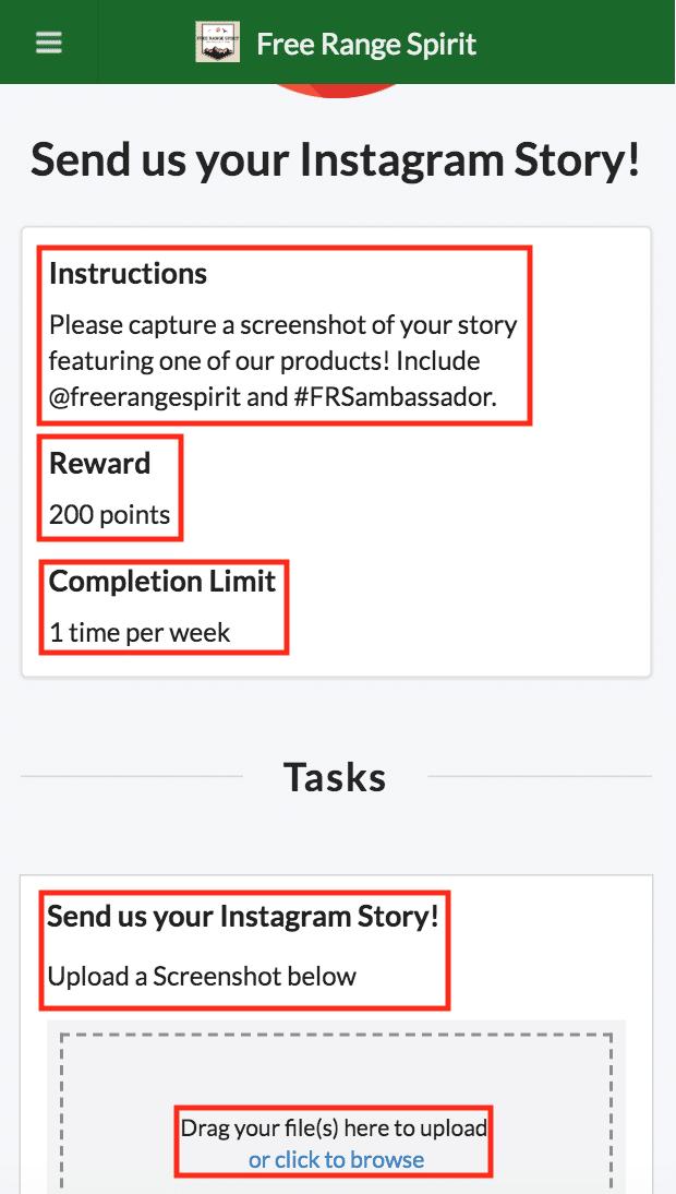 BrandChamp ambassador software activities Instagram stories instructions rewards tasks