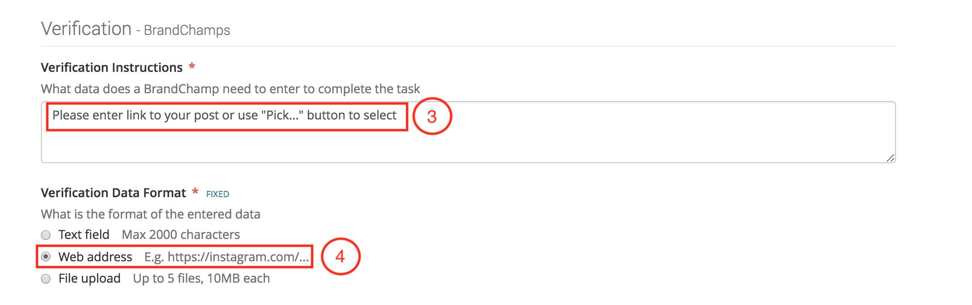 BrandChamp activity type social media verification instructions formats