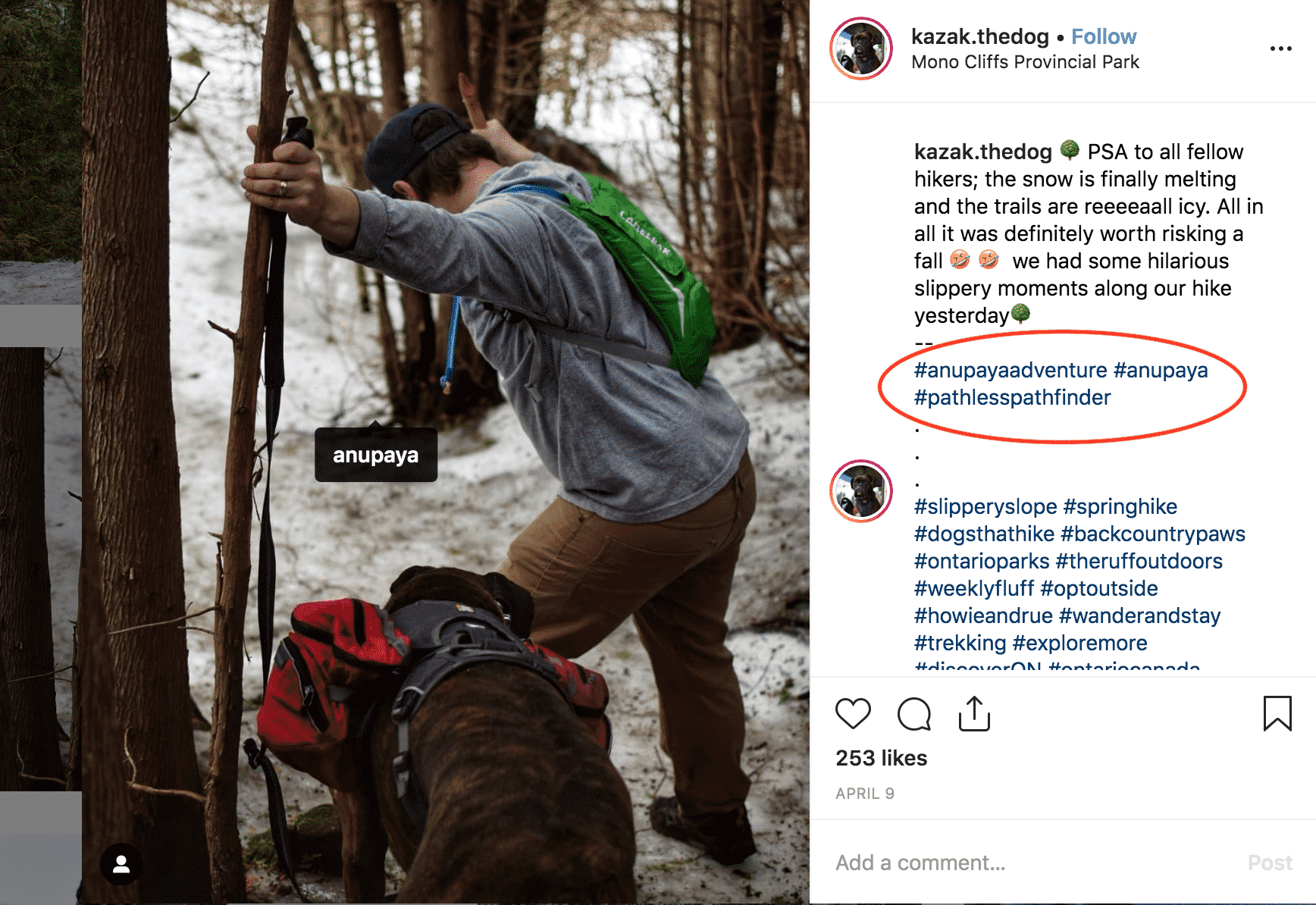 Anupaya ambassador pathfinder instagram post hiking backpack dog with backpack trees