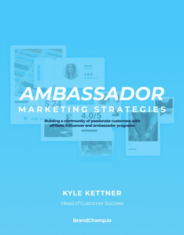 eBook Cover for Ambassador Marketing Strategies